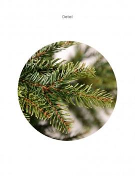 Choinka / Tree Tajga 240cm