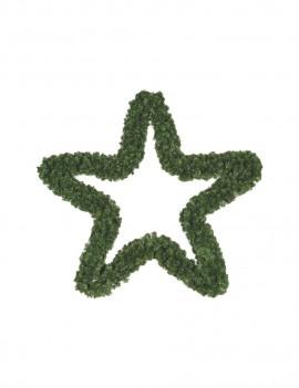 Gwiazda Królewska 140cm/ Christmas Star 140cm
