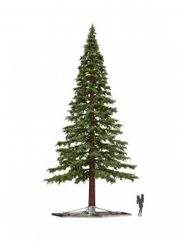 Pine Giant Extra
